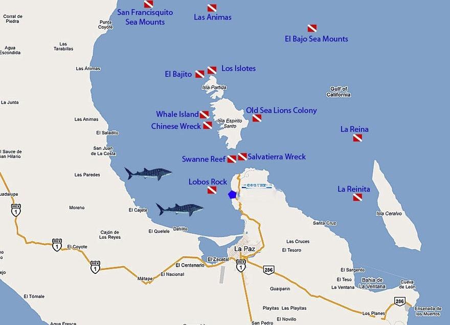 Dive Map La Paz BCS