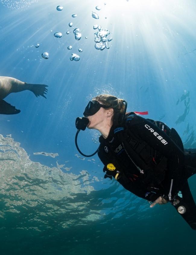 amazing-diving